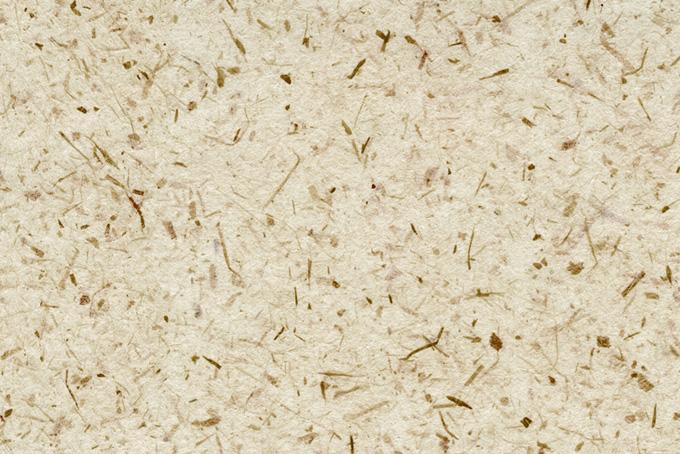 白い和紙の皮と楮のテクスチャ