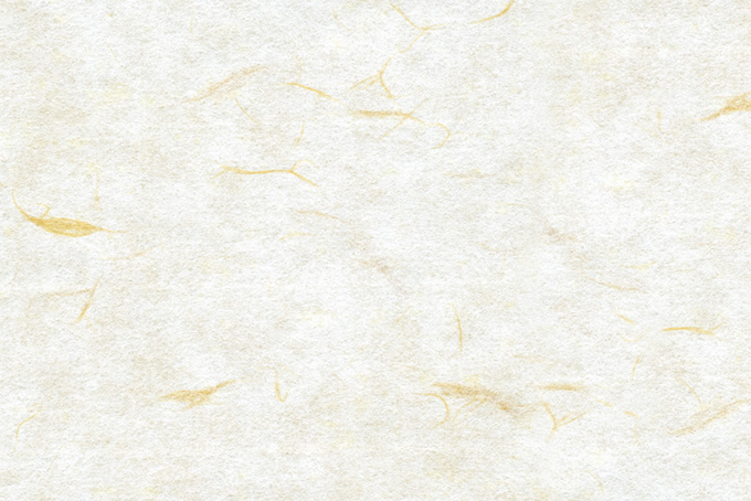 楮の模様が美しい白い和紙の背景