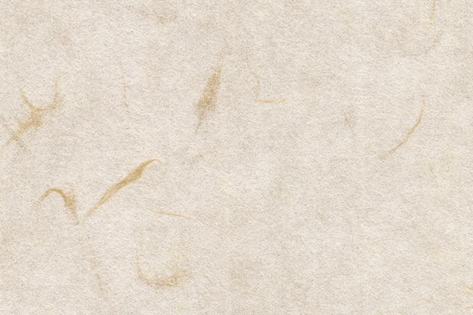 大きな楮筋のある生成色の和紙の背景