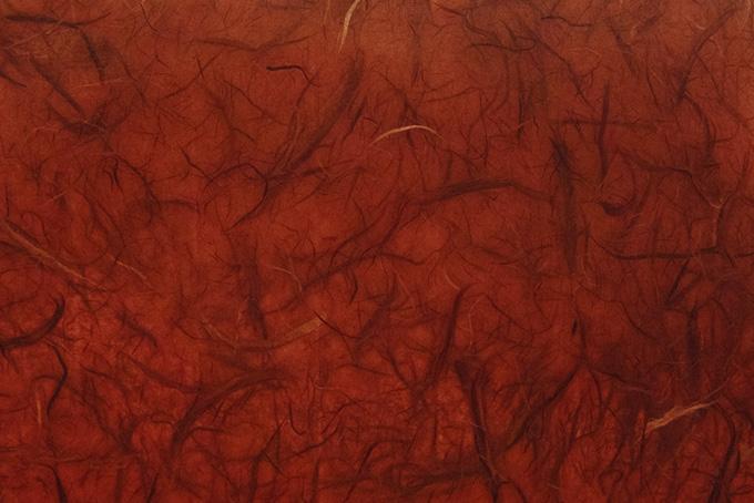 雲竜柄の弁柄色和紙の画像素材