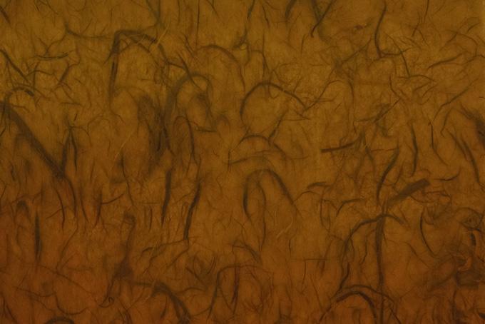 雲竜柄の褐色和紙の画像素材