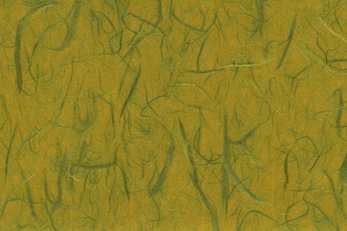 緑雲竜柄の菜種油色和紙の画像素材