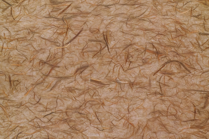 楮筋を漉き入れた茶色の和紙写真