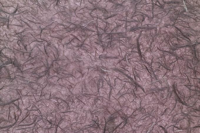 楮筋を潤沢に入れた石竹色和紙の画像素材