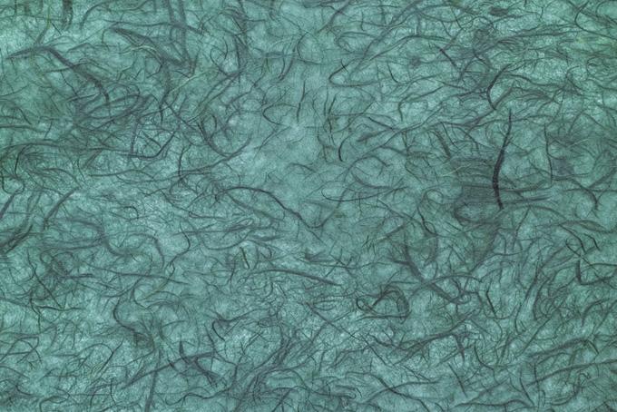 無数の楮筋がある浅葱色和紙の画像素材