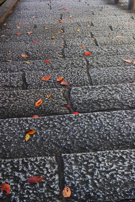 落ち葉と古都の石階段
