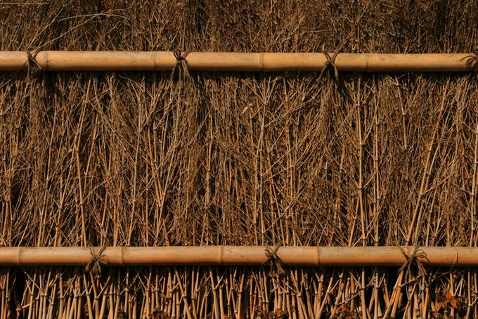 竹と枝の壁の背景