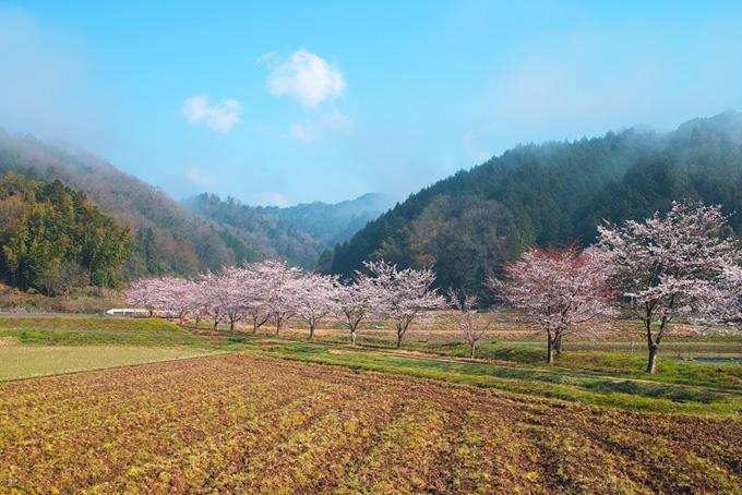 「風景 素材」美しい日本の風景の写真、海や山などの自然風景の背景、春夏秋冬の田舎風景の画像など、高画質&高解像度の画像素材を無料でダウンロード