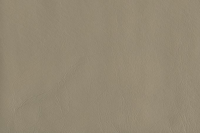 皮革 淡色カラー