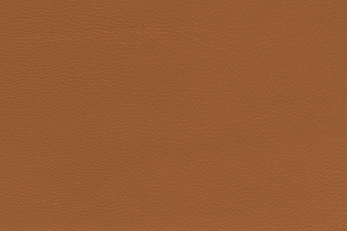 皮革 濃色カラー