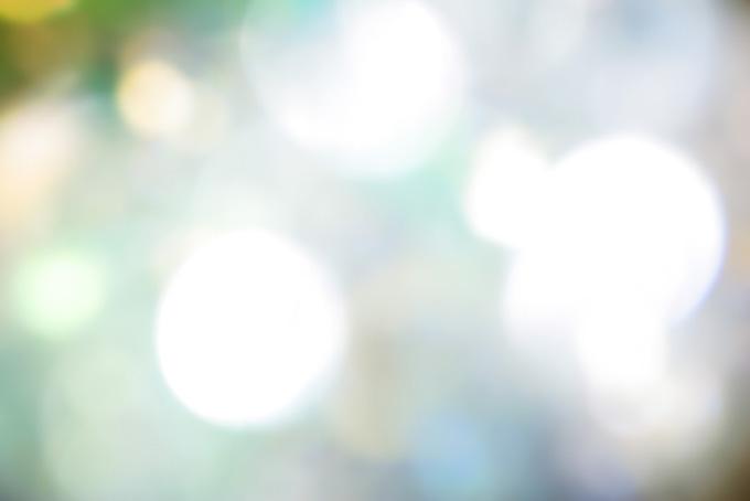 生命感溢れる眩しい光