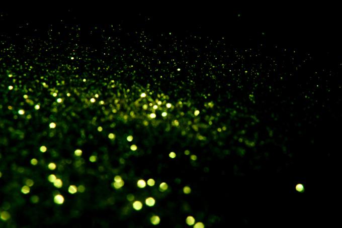 黄緑色の光の玉