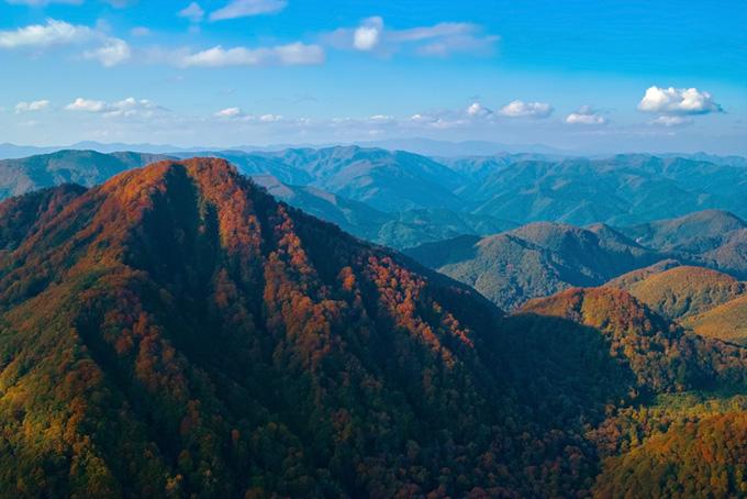 山頂が赤く染まり始める季節の風景(山 フリーの画像)