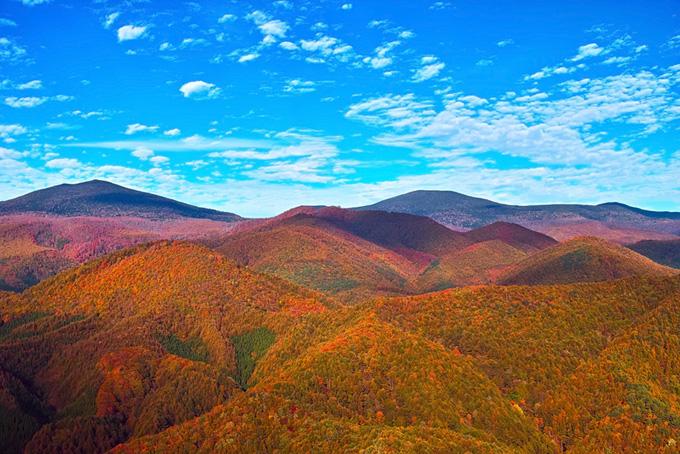 美しい紅葉の山岳の写真