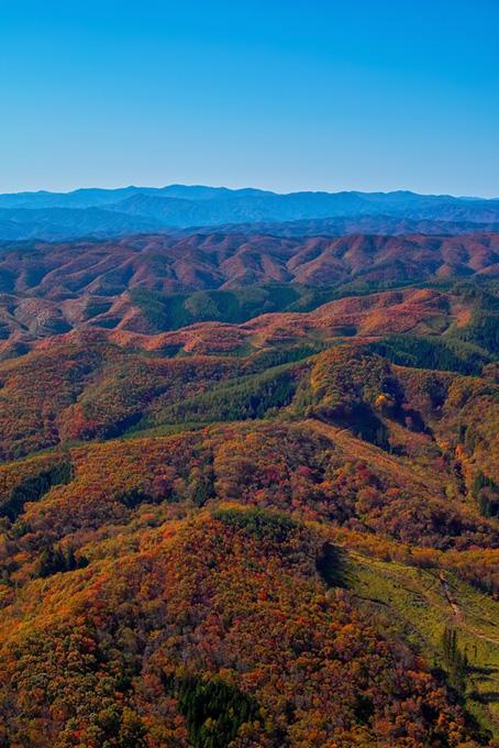 連なる山々が紅葉で赤く染まる