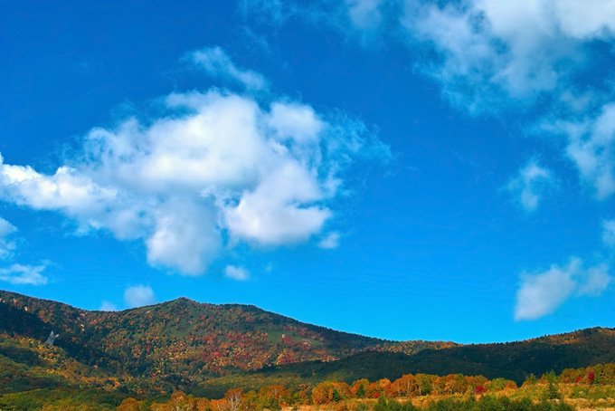 木々が色づく秋の山の写真