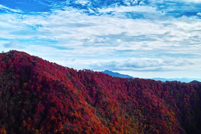 山並み(紅葉 山のフリー画像)