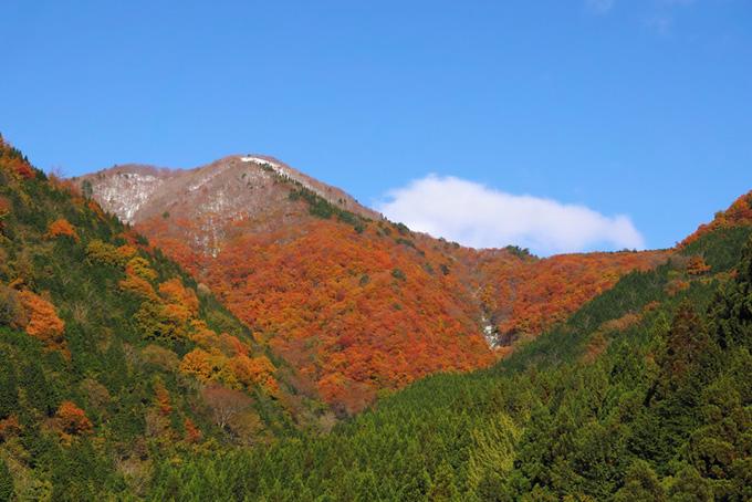 山・自然(紅葉 山のフリー画像)