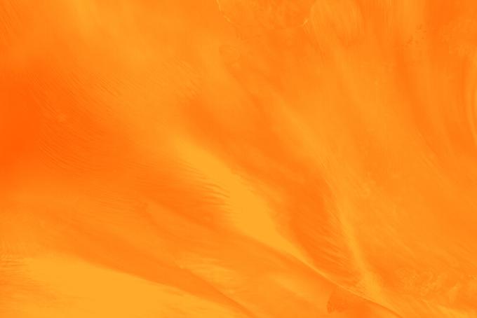おしゃれ、オレンジ、橙色、柿色、赤橙、黄赤色、人参色、蜜柑色、だいだいいろ、オレンジ色、0range
