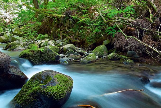水が静かに流れる川の写真