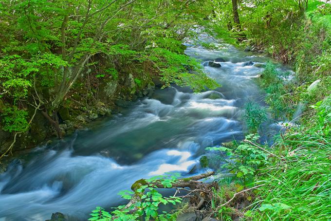 ひっそりと流れる水の澄んだ小川