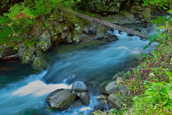 丸太の橋が架かった緑の美しい渓流