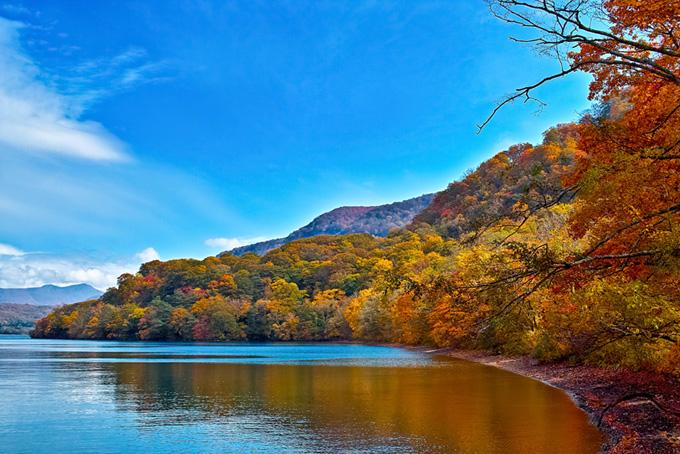 美しく紅葉する湖岸の背景(紅葉 風景のフリー画像)