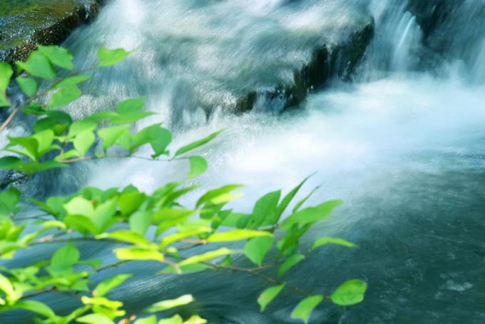 涼しげな初夏の川瀬の風景写真