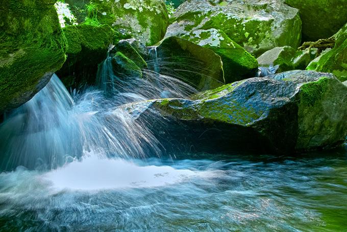 苔のついた岩を流れる渓流の素材