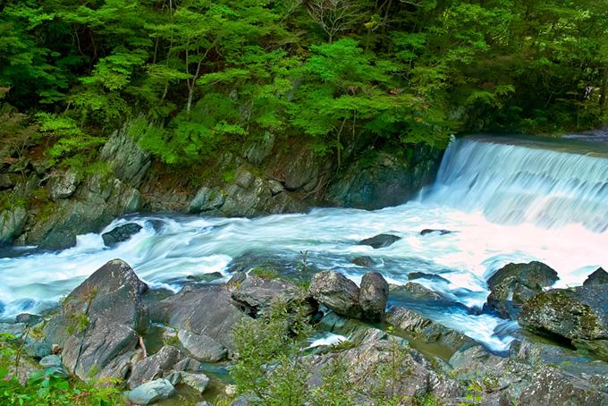 流れの激しい渓流にある堰堤