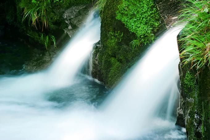 苔の岩から溢れ出す水
