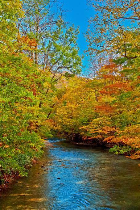 秋の色彩が映り込む渓流