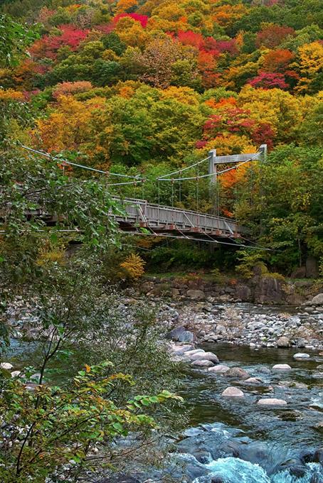 紅葉する渓谷に架かる吊り橋