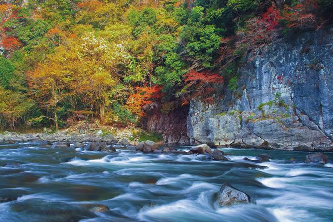 「川 素材」綺麗な水の流れる川の写真、山奥の美しい渓流の背景、新緑の木々と清流の画像など、高画質&高解像度の画像・写真素材を無料でダウンロード