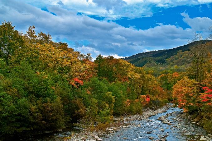 川と自然(紅葉 風景のフリー画像)