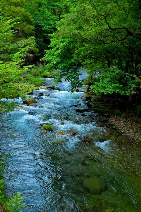 川の風景のテクスチャ
