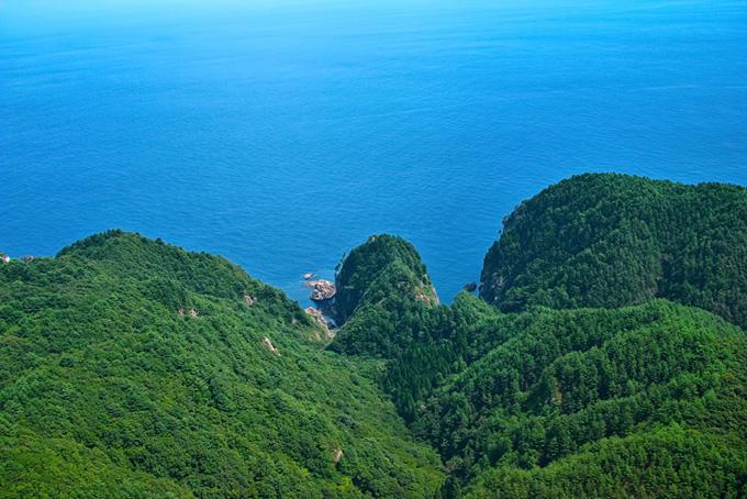 新緑の山から続く海