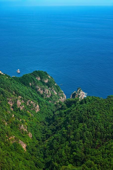 緑の岬と穏やかな海