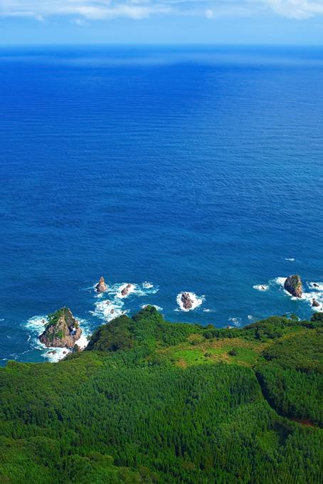 緑の海岸線と青い水平線