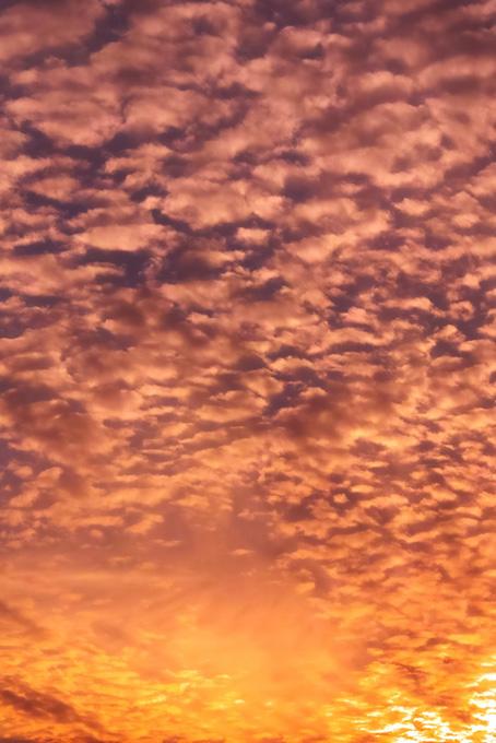 羊雲が夕焼けに照らされる(空 おしゃれ テクスチャの画像)