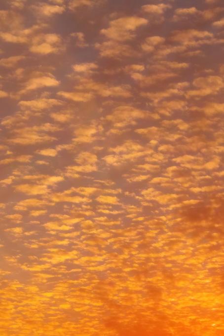 オレンジ色の雲が夕焼けに広がる(空 おしゃれ テクスチャの画像)