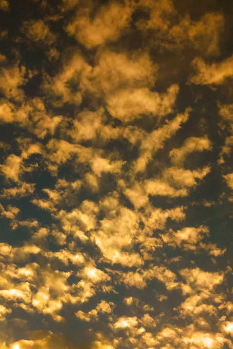 夕焼け雲が褐返色の空に光る