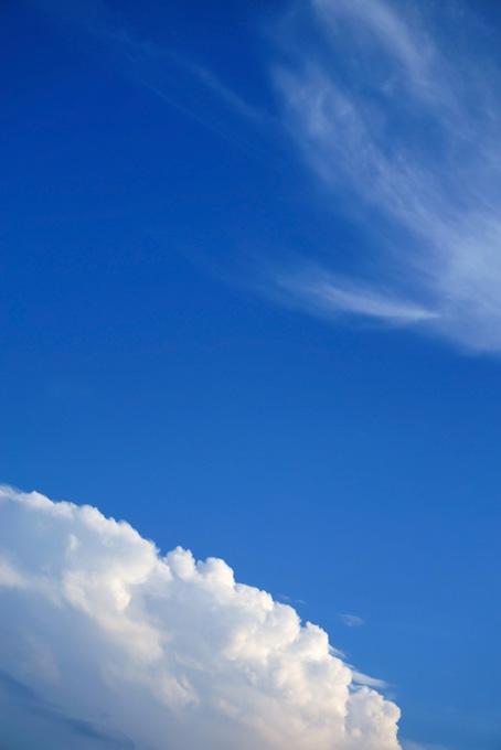 青空に浮かぶ筋雲と積乱雲