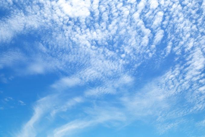 青空に広がる小さな雲の大群