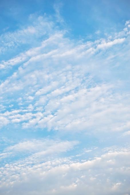 青空に並ぶように浮かぶ高積雲