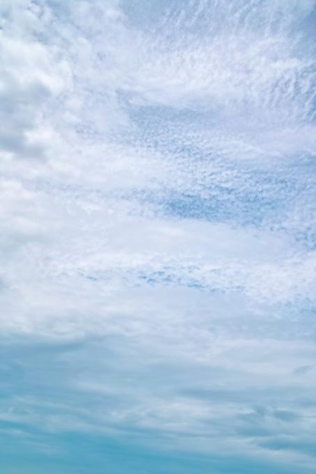青空を覆い尽くす種々雑多な雲