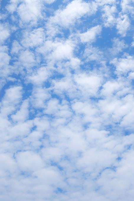 無数の綿のような雲が青空に登る