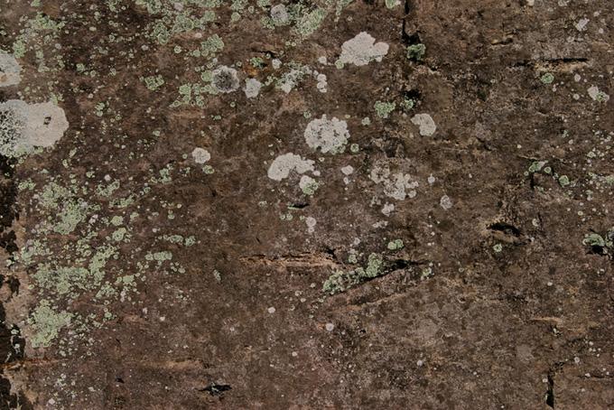 自然の模様が入った岩石