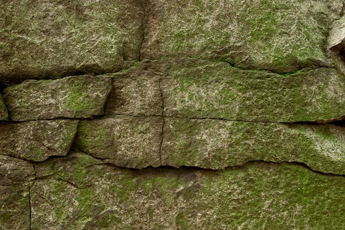 苔の生えた石積み