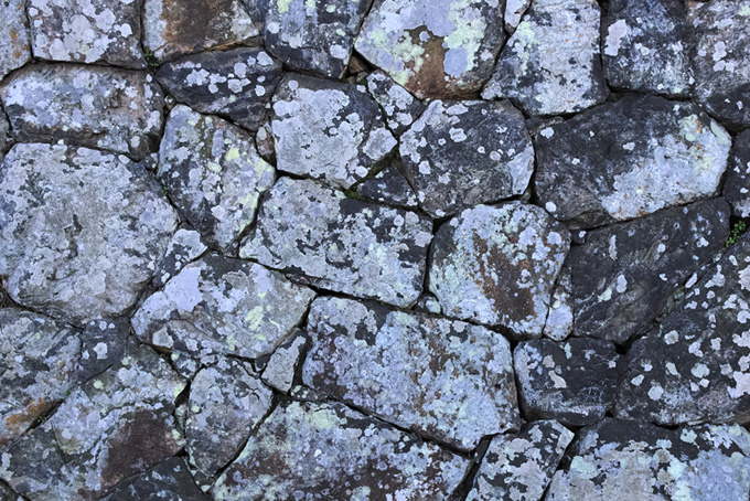 白い柄が付いたような石の壁面